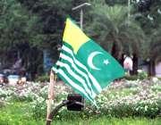لاہور : لبرٹی چوک کی گرین بیلٹ پر لہراتا کشمیر کا پر چم دلکش نظارہ پیش ..