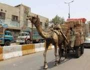 کراچی: ماضی میں اونٹ کی گاڑی پر سامان لادنے کا رواج تھا ، لیکن وقت کے ..