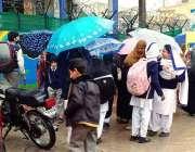 راولپنڈی: بارش سے بچانے کیلئے طلبا چھتریوں کی آڑ میں جاتے ہوئے
