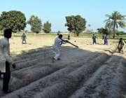 ملتان: روکن ایٹی گاؤں میں میدان میں کرکٹ کھیلنے والے نوجوانوں کا ایک ..