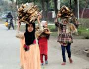 لاہور: گیس کی لوڈشیڈنگ کے باعث بچیاں اپنے گھر کا چولہا جلانے کیلئے لکڑیاں ..