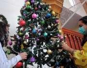حیدرآباد، مسیحی برادری کے تہوار کرسمس کے موقع پر لڑکیاں کرسمس ٹری سجا ..