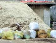راولپنڈی: شہر میں پیر واہدی کے علاقے میں مزدور بیگ بھوسی سے بھرنے میں ..