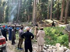 Malakand : Commissioner Riaz Khan Mahsud on an official visit to Kumrat via Kalam, Gabral, Badgoi and Thall saw 06 persons busy in illicit cutting of trees. They had loaded huge timbers in the truck. All the 06 persons were arrested with their Chainsaw and vehicle was detained by the Commissioner .