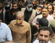لاہور، مسلم لیگ ن کے صدر شہباز شریف سیشن کورٹ میں پیشی کیلئے آ رہے ہیں۔