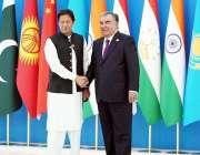 دوشنبے، تاجکستان کے صدر ایمومولی رحمون شنگھائی تعاون تنظیم کے اجلاس ..