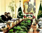 اسلام آباد، وزیر خزانہ عبدالحفیظ شیخ قومی اقتصادی رابطہ کمیٹی کی ایگزیکٹو ..