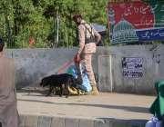 کراچی، 12 ربیع الاول کے مرکزی جلوس کی گزرگاہوں کو رینجرز اہلکار جاسوس ..