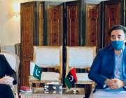 اسلام آباد، چئیرمین پاکستان پیپلز پارٹی بلاول بھٹو زرداری سے امریکی ..