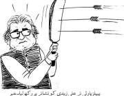 پیپلز پارٹی نے علی زیدی کو نشانے پر رکھ لیا۔ خبر