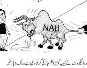 لاہور ہائیکورٹ نے نیب کو حمزہ شہباز شریف کی گرفتاری سے روک دیا۔ خبر