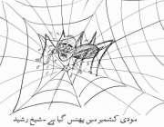 مودی کشمیر میں پھنس گیا ہے۔ شیخ رشید