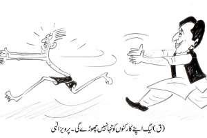 مسلم لیگ (ق) اپنے کارکنوںکو تنہا نہیںچھوڑے گی ۔ چوہدری پرویز الہی