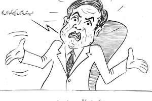 آلو کی بڑھتی ہوئی قیمتوںپر وزیر خزانہ کا اظہار تشویش