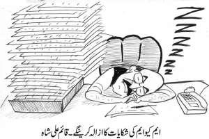 ایم کیو ایم کی شکایات کا ازالہ کریں گے ، وزیراعلی سندھ