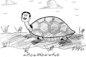 پنجاب حکومت سست روی کا شکار ہے۔ سپریم کورٹ