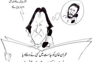 عمران خان کو سیاست میں کس نے دھکا دیا خود ہی بتا سکتے ہیں، شاہد آفریدی