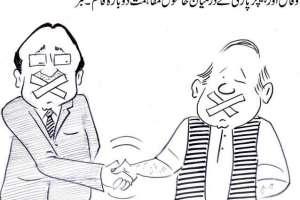 وفاق اور پیپلز پارٹی کے درمیان خاموش مفاہمت دوبارہ قائم۔ خبر
