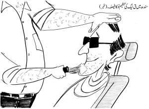 سندھ میں ق لیگ کی تنظیم نو کا فیصلہ ۔ (خبر)
