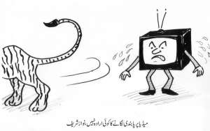 میڈیا پر پابندی لگانے کا کوئی ارادہ نہیں ۔ نواز شریف