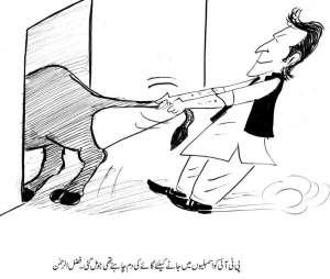 پاکستان تحریک انصاف کو اسمبلیوںمیں جانے کیلئے گائے کی دُم چاہئے تھی جو مل گئی، مولانا فضل الرحمن