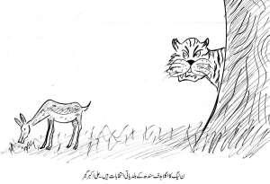 مسلم لیگ ن کا اگلا ہدف سندھ کے بلدیاتی انتخابات ہیں۔ علی اکبر گجر