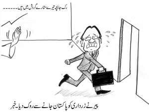 پیر نے آصف علی زرداری کو پاکستان جانے سے روک دیا۔ خبر