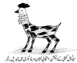 میونسپلکمیٹی کے انتخابات، انتخابی نشان مرغا بکری میں تبدیل۔ خبر