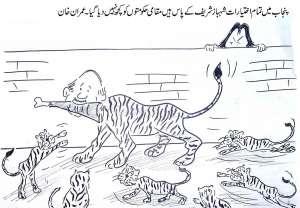 پنجاب میں تمام اختیارات شہباز شریف کے پاس ہیں، مقامی حکومتوںکو کچھ نہیںدیا، عمران خان