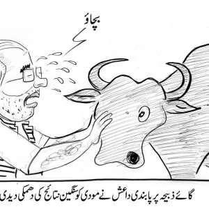 گائے ذبح پر پابندی، داعش نے نریندرا ..