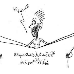 بجلی کی قیمت میں فی یونٹ 2 روپے ..