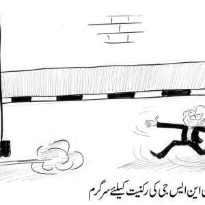 پاکستان این جی ایس کی رکنیت کیلئے ..