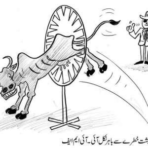 پاکستانی معیشت خطرے سے باہر ..