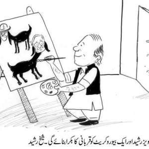 حکومت پرویز رشید اور ایک بیوروکریٹ ..