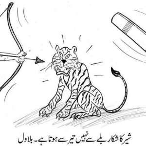 شیر کا شکار بلے سے نہیں تیر سے ..