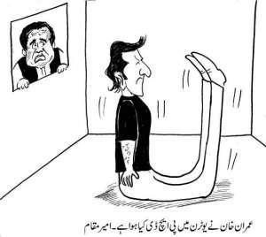 عمران خان نے یوٹرن میں پی ایچ ڈی کیا ہوا ہے۔ امیر مقام