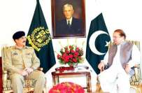 وزیر اعظم سے آرمی چیف کی ملاقات ،اہم امور پر تبادلہ خیال