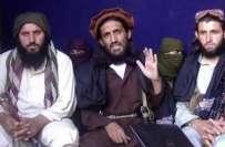 ہماری جنگ نظریاتی ہے،کسی بھی طاقت سے نہیں ڈرتے، سربراہ تحریک طالبان ..