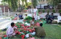 فیصل آباد: تحریک انصاف کا جلسہ ، لوگوں کی آمد کا سلسلہ جاری