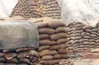 جیکب آباد ،گندم کی بلوچستان اور افغانستان اسمگلنگ ہونے لگی، 9ہزار گندم ..