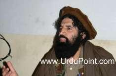 حالیہ بم دھماکوں میں تحریک طالبان ملوث نہیں، دھماکوں میں ملوث قوتوں ..