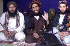 جنگ بندی کے دوران کسی پر حملہ نہیں ہوگا،تحریک طالبان، طالبان ایک ماہ ..