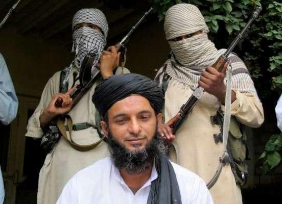 اپوزیشن ن لیگ کو جنگ میں دھکیلنا چا ہتی ہیں،عصمت اللہ معاویہ