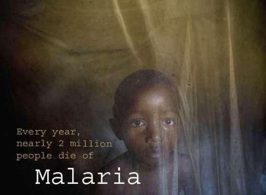 دنیا میں ہر 30سیکنڈبعد ایک بچہ ملیریا بخار کے باعث لقمہ اجل بن جاتا ہے' ..