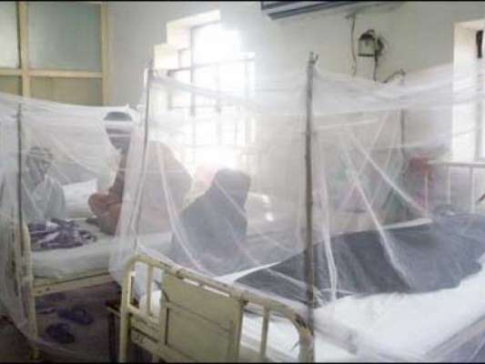 لاہور میں مزید سات افراد ڈینگی کا شکار، مریضوں کی مجموعی تعداد53 ہوگئی