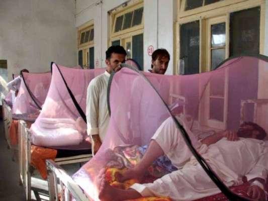 سوات ،مزید دوافراد ڈینگی وائرس کا شکار ،تعداد 181تک پہنچ گئی