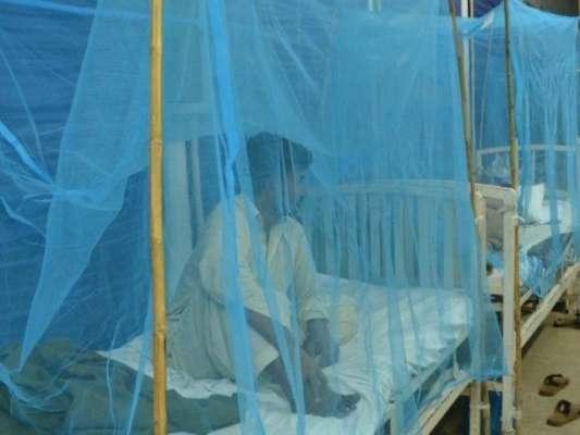 پنجاب میں مزید 32 افراد ڈینگی وائرس کا شکار، مجموعی تعداد 1205 ہو گئی