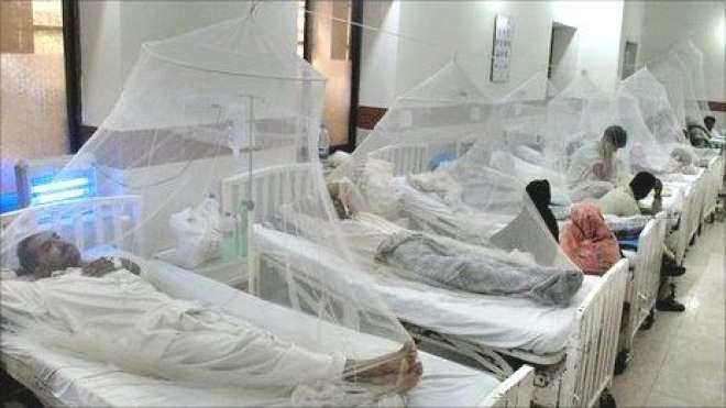 اسلام آباد میں ڈینگی کا پہلا مریض جاں بحق ہو گیا