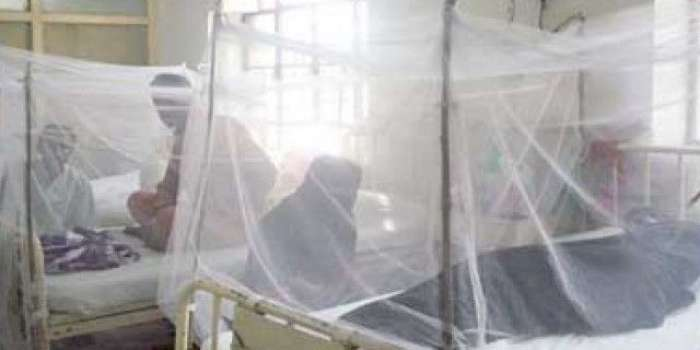 پنجاب میں مزید 5 مریضوں میں ڈینگی وائرس کی تصدیق، کئی مقامات ہائی رسک قرار