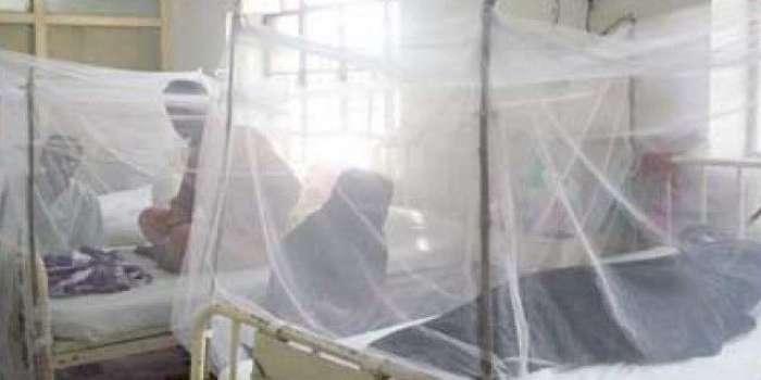 پنجاب میں مزید 11افراد افراد ڈینگی وائرس کا شکار ہو گئے ، مجموعی تعداد 207تک پہنچ گئی